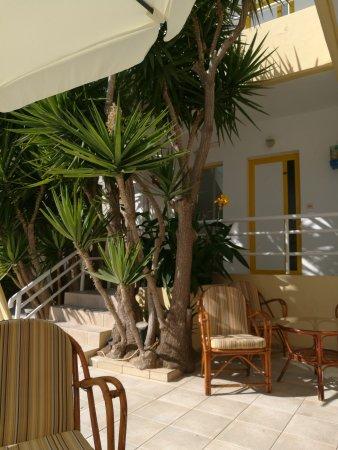 Cosmi Apartments: IMG_20170914_155635_large.jpg