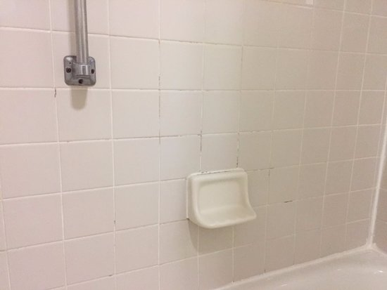 ‪‪Austinburg‬, ‪Ohio‬: Mold in the shower‬