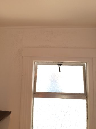 Painted Over Mold Around Window And Walls Picture Of Tides
