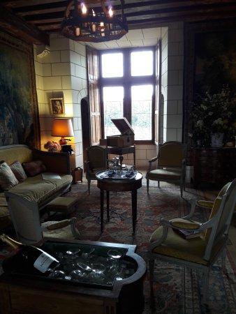 Cere La Ronde, France: Salon