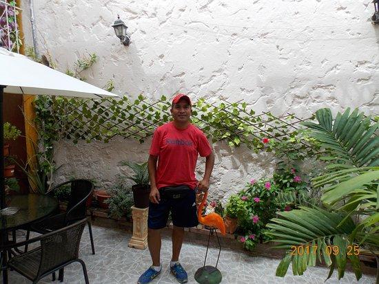 Hotel Casa Alejandria: Mauricio
