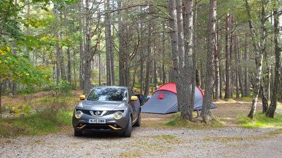 Rothiemurchus Camp and Caravan: 20170929_160907_large.jpg