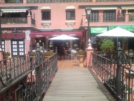Restaurante Oliva : Approach.