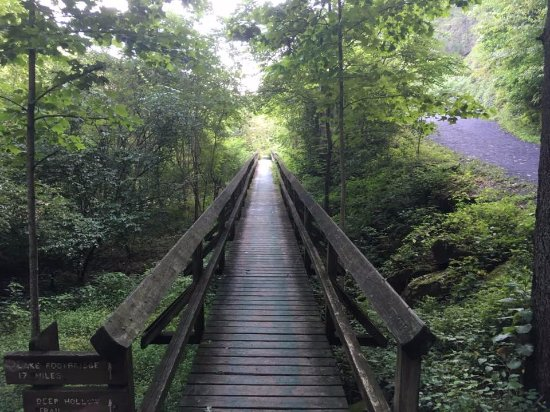 Bristol, TN: Boardwalk at the falls and stone dam - Steele Creek Park