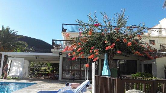 Hotel Sao Jorge Garden Photo