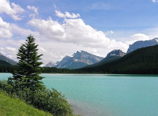 Canadian Rockies Picture
