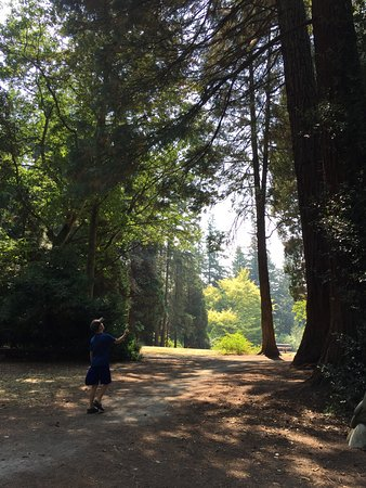 Surrey, Canada: Strolling through the trees at Redwood Park