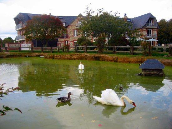 Quetteville, Франция: Schwanenteich im Park
