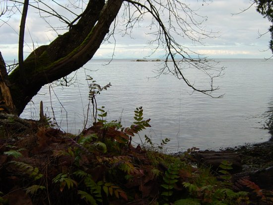 Nanaimo, Canadá: Another view of Snake Island.