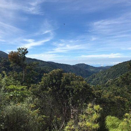 San Gerardo de Dota, Costa Rica : Vista de la habitación