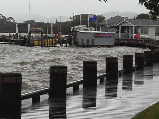 Distrik Rotorua, Selandia Baru: Parrasailing Lake front