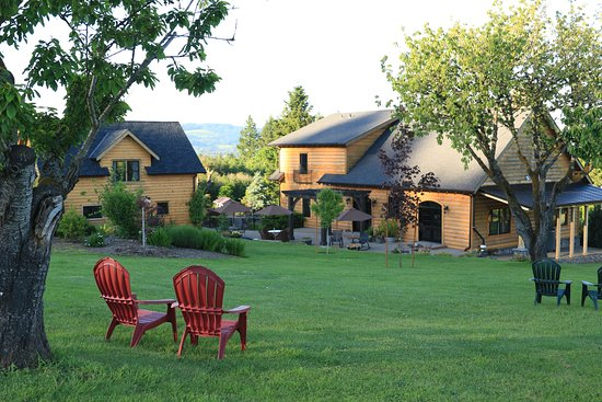 Dundee, OR: Enjoying the beauty of the Fall with views of Wineries the distant Chehalem Hills