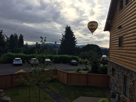 Dundee, OR: Wow!  The balloons (Vista Balloons) almost dropped down on us this morning!