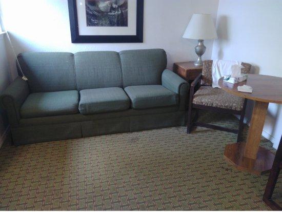 Sensational Salon Avec Le Sofa Bed Tout Pourri Picture Of Indian Flat Creativecarmelina Interior Chair Design Creativecarmelinacom