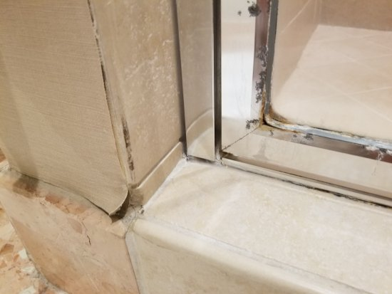InterContinental Los Angeles Century City : Corroded gunky shower door and peeling wallpaper