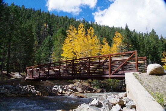 Georgetown, CO: Bridge on Guanella Creek