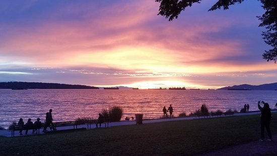 Sunset on English Bay, taken from front of the Sylvia Hotel.