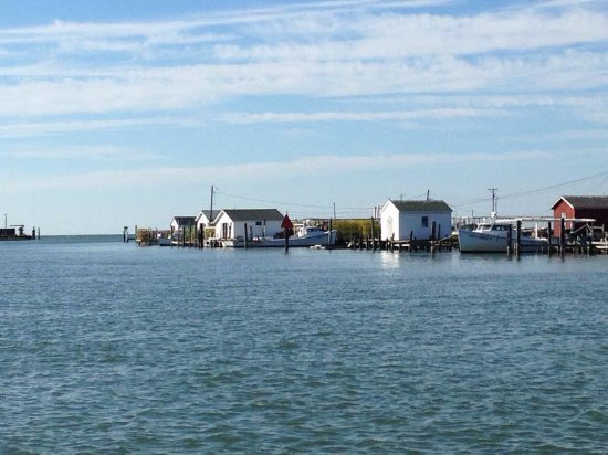 Tangier Island, VA: Docks and sheds