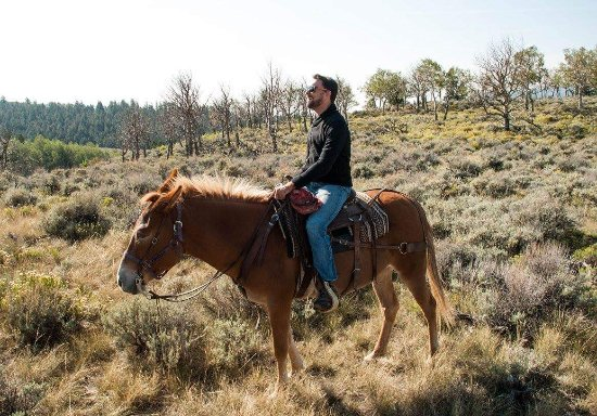 Granite Mountain Outfitters: FB_IMG_1506987124550_large.jpg