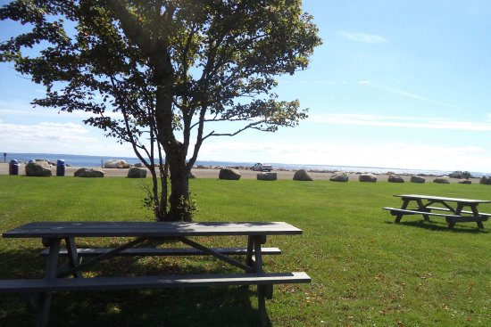 Mattapoisett, Μασαχουσέτη: Lots of picnic tables at Ned's Point