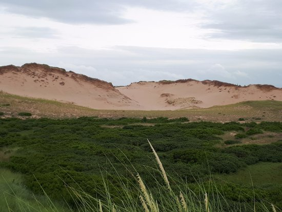 Saint Peters Bay, Kanada: The dunes and grasslands from the observation point