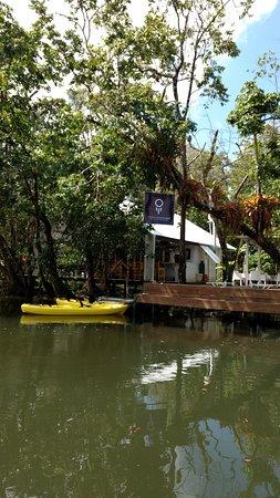 Dreamcatcher Eco Lodge: getlstd_property_photo