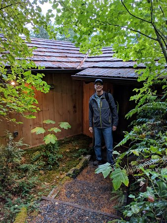 Deep Forest Cabins at Mt. Rainier: The Salal