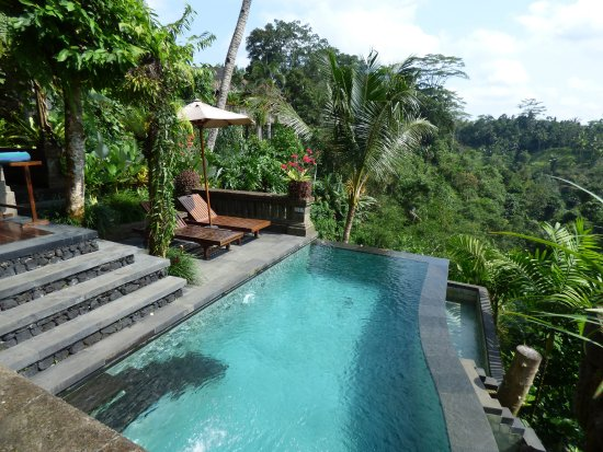 Bidadari Private Villas & Retreat: Pool at Villa Tunjung
