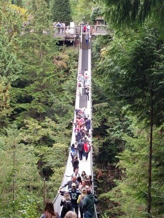 Vancouver Utara, Kanada: the damn crowded suspension bridge