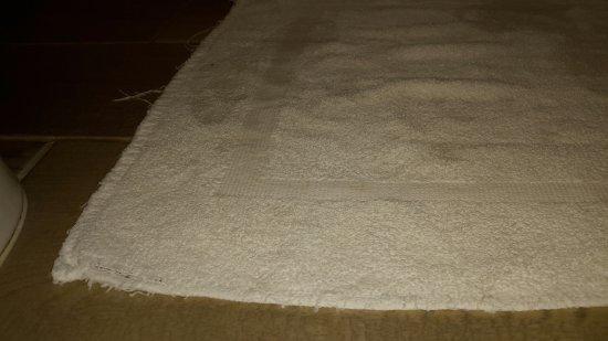 Microtel Inn & Suites by Wyndham Bowling Green: thin, worn bath mat