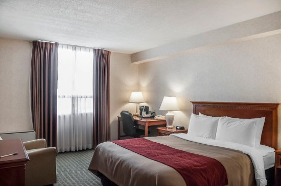 Comfort Hotel Airport North: Guest Room