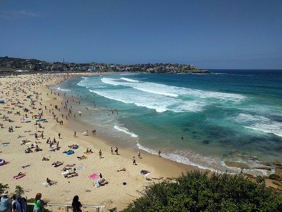 Sydney beach Nude Photos 70