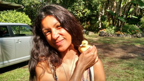 Naalehu, Hawaje: Jade working the farmstand today with Dory the Duckling