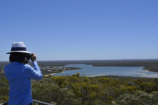 Bremer Discovery Day Trip desde Albany