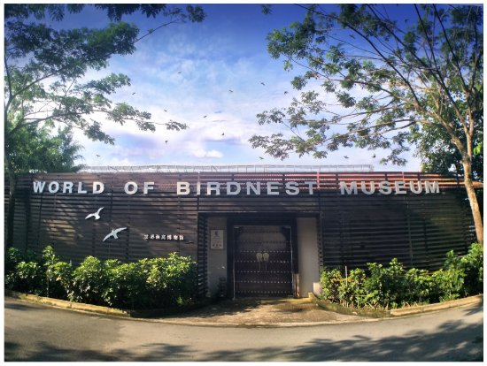 World of Birdnest Museum