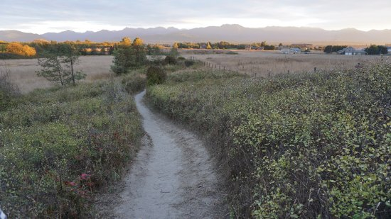 Sequim, Etat de Washington : Hiking trail in the park