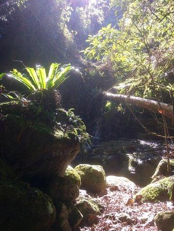Killarney, Αυστραλία: photo2.jpg
