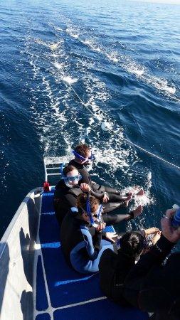 Temptation Sailing: photo4.jpg