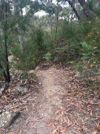Trail route