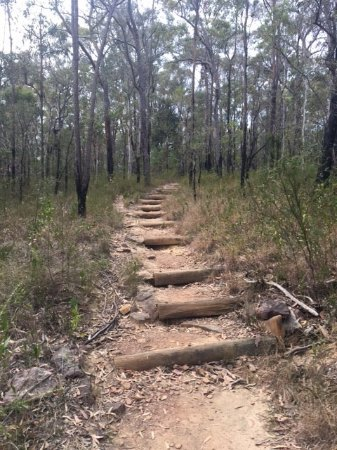 Trail route uphill