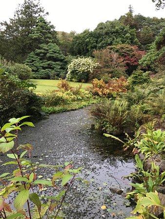 Arduaine Garden: photo1.jpg