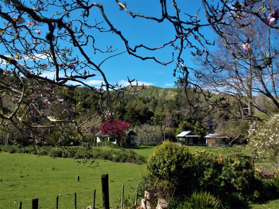 Morere, New Zealand: 2 bedroom cottage & cabins