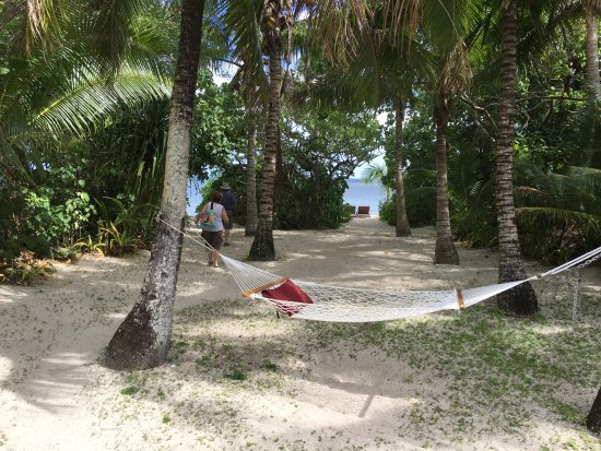Fafa Island Resort: Our hammock outside the fale