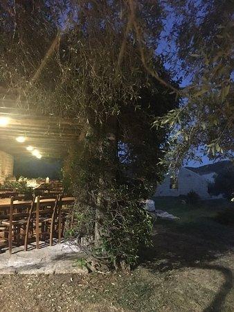 Luogosanto, Italy: photo6.jpg