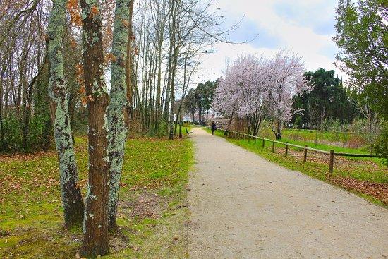 Parque da Cidade - Mealhada