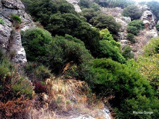 Richtis Gorge (Sitia, Řecko) - Recenze - TripAdvisor