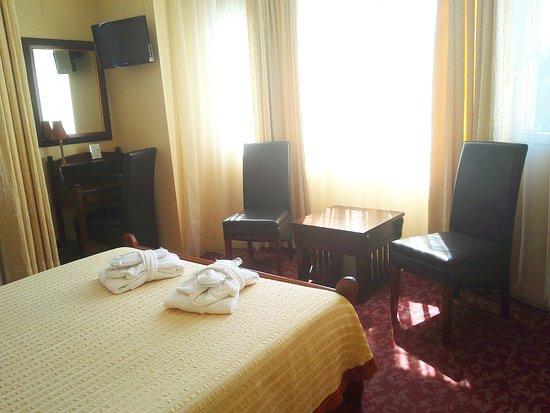 Hotel Alexandre III : Room