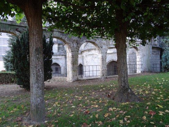Le jardin du mus e des beaux arts picture of musee des for Beaux arbres de jardin