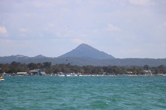 The Noosa Ferry Cruise Company: travelling on the Noosa ferry