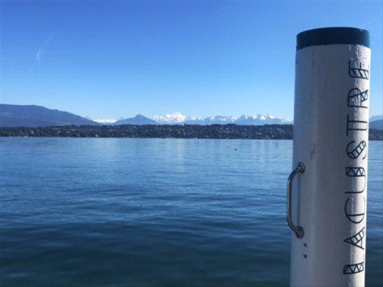 Dans un cadre exceptionnel, à deux pas de Genève, le Lacustre vous accueille pour un voyage gust